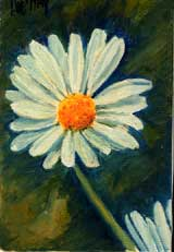 gal/Natures_Mortes/Petits_Formats/_thb_006_6_1_Marguerite.jpg